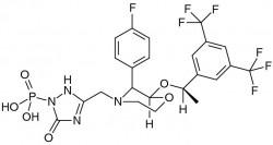 fosaprepitant.EPS