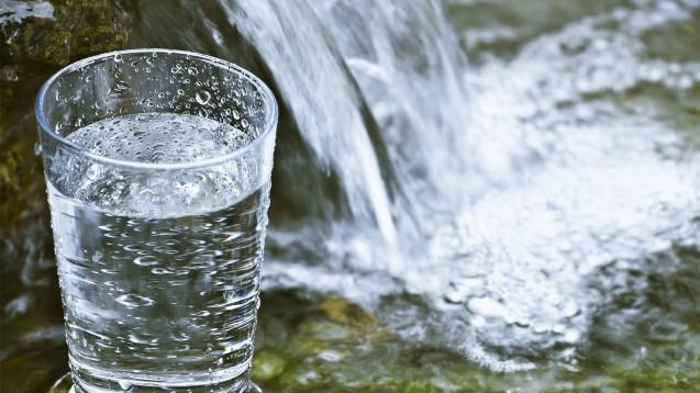 Ein Glas Wasser spielt in unserer Rätselfrage eine unrühmliche Rolle. (p / Foto: S_E / stock.adobe.com)