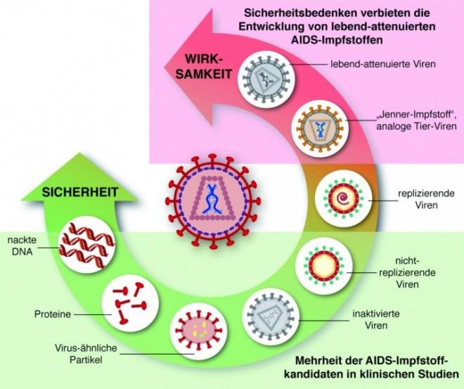 D4811_du_HIV_Abb1.jpg