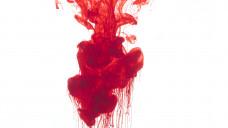 Hämophilie A ist eine vererbbare Blutgerinnungsstörung, die vor allem Männer trifft. (Foto:creativesunday / stock.adobe.com)
