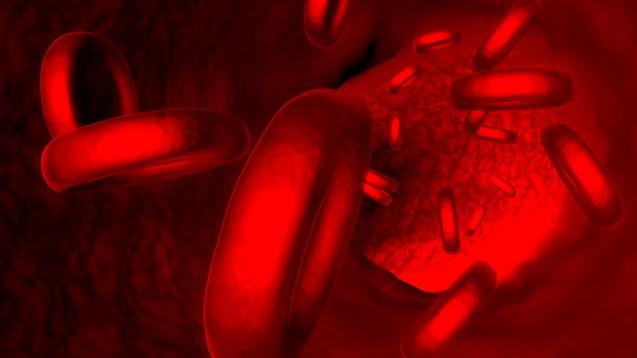 Blutspende: Der Ausschluss von Männern, die sexuelle Beziehungen zu Männern hatten, kann rechtens sein. (Foto: ralwel/Fotolia)