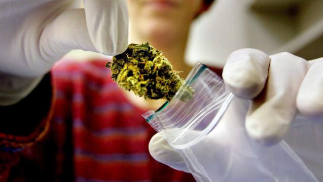 In den USA wird der Cannabis-Konsum in immer mehr Staaten zumindest teil-legalisiert, in Texas soll nun die erste Apotheke eröffnen, die Cannabis zum medizinischen Gebrauch abgibt. (Foto: ANP / dpa)