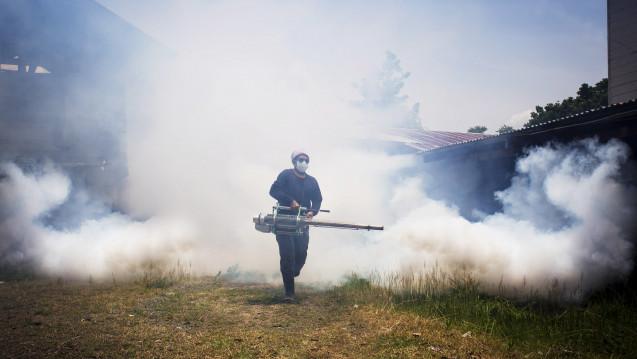 """Im Kampf gegen Dengue-Ausbrüche """"räuchern"""" Schädlingsbekämpfer in schweren Fällen die Überträger-Mücken des Dengue-Virus mit Insektiziden aus.(Foto:kiatipol / stock.adobe.com)"""