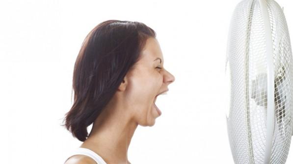 Wechseljahre: Phytos bei Hitzewallungen nicht geeignet