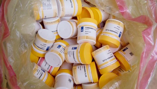 Derzeit haben gut 1000 Patienten eineAusnahmeerlaubnis des Bundesinstituts für Arzneimittel und Medizinprodukte(BfArM) zum Erwerb von getrockneten Cannabisblüten und Cannabisextrakten zur medizinischen Anwendung.(Foto: Swen Pförtner / dpa)