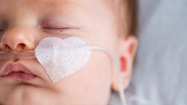Die Fälle invasiver Meningokokken-B-Erkrankungen haben 2019 im Vergleich zum Vorjahr zugenommen. (m / Foto:lavizzara / stock.adobe.com)