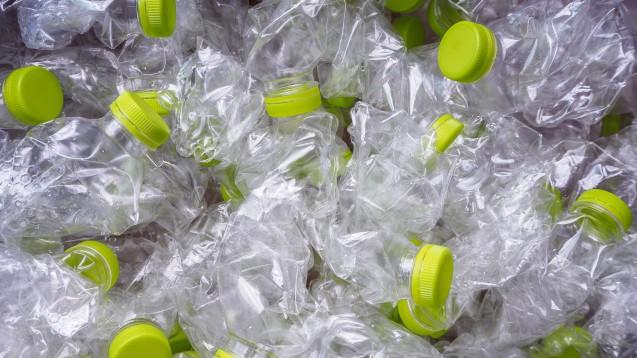 Alle Teilnehmer tranken aus PET-Flaschen. Ein Zusammenhang zwischen dem Ernährungsverhalten und einer Belastung mit Mikroplastik konnten die Wissenschaftler aufgrund der kleinen Probandengruppe nicht herstellen. (Foto:Kwangmoo / stock.adoeb.com)