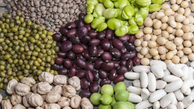 Vor allem Menschen mit gesundheitlichen Risiken sollen profitierten, wenn sie tierische Proteine durch pflanzliche ersetzen. (Foto: maríamarmar / Fotolia)