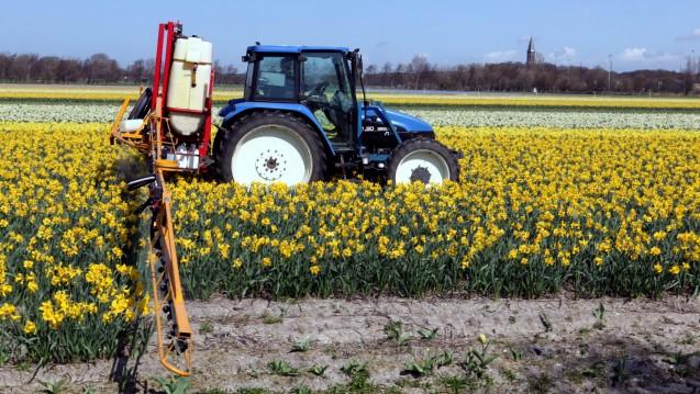 Glyphosat wird in der Landwirtschaft recht häufig eingesetzt. (Foto: joost j. bakker / Flickr, CC BY 2.0)