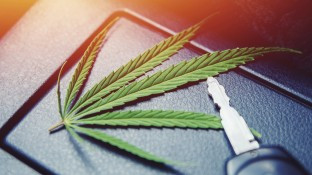 Droht Cannabis-Patienten der Führerscheinentzug?