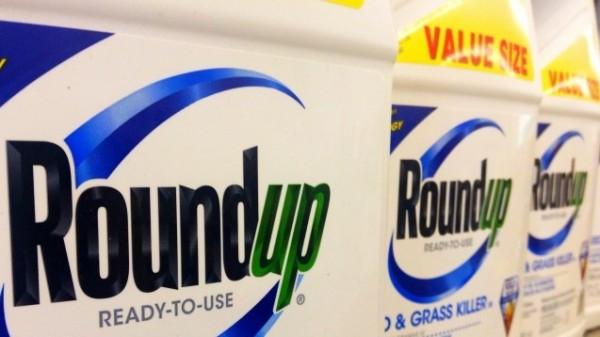 Bayer umwirbt Monsanto weiter
