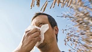 Die Allergie bekämpfen mit Cortison