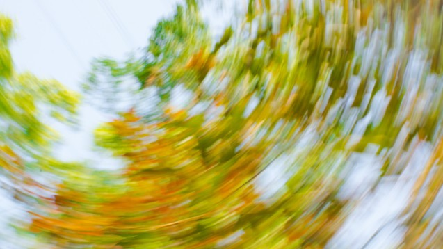 2,4 Prozent aller Menschen erleben irgendwann im Leben einen BPPV – dabei kommt es plötzlich und attackenartig zum Auftreten von starkem Drehschwindel, der durch Kopf- und Körperbewegungen ausgelöst wird. (Foto: tampakto / stock.adobe. com)