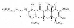 D3610_ck_AuT_Tigecyclin_Fo.jpg