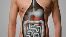 """Der heutige Tag der Apotheke findet unter dem Motto """"Für Ihr Bauchgefühl. Was tun bei Magen-Darm-Beschwerden?"""" statt. (Bilder: ABDA)"""