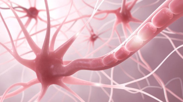 Multiple Sklerose: Demyelinisierung der Neurone charakterisiert die häufigste neurologische Erkrankung junger Erwachsener. (Foto: ag visuell / Fotolia)
