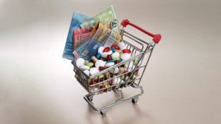 Pläne für Referenzpreissystem werden konkretisiert