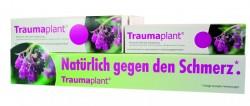 D2209_wt_pp_Traumaplant.jpg