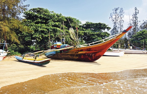 Sicher reisen in Sri Lanka