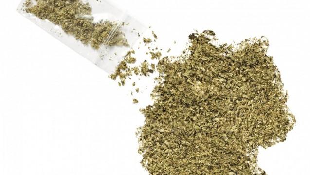 Cannabis als Medizin: derzeit viel diskutiertes Thema bei Apotheken, Kassen und Patienten. (Foto: eyegelb – Fotolia.com)