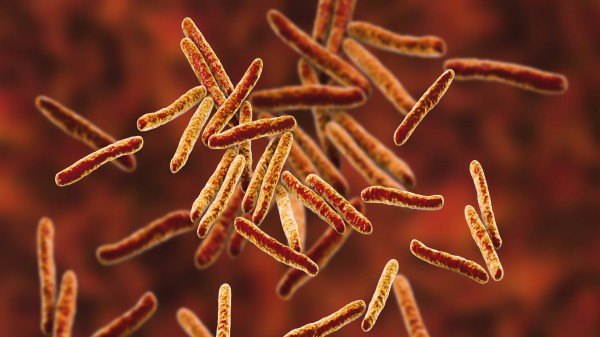Resistente Tuberkuloseformen bereiten Sorgen
