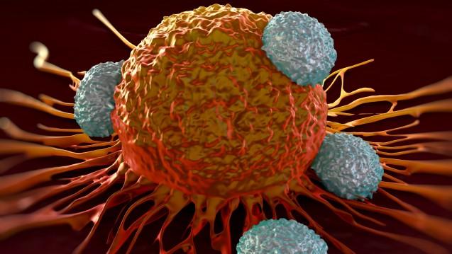 Der Ansatz der Mainzer Forscher soll Immunzellen zu den Krebszellen führen. (Foto: royaltystockphoto / Fotolia)