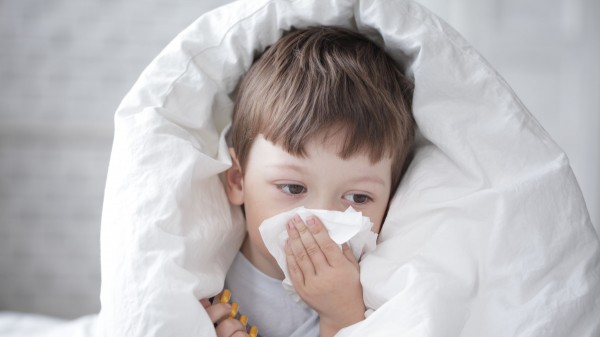Die Grippewelle hat begonnen, …