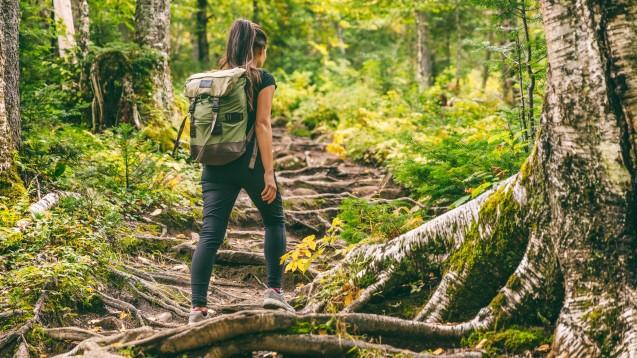 Über Stock und Stein: Auf was sollte man beim Wandern vorbereitet sein? (c / Foto: Maridav / stock.adobe.com)