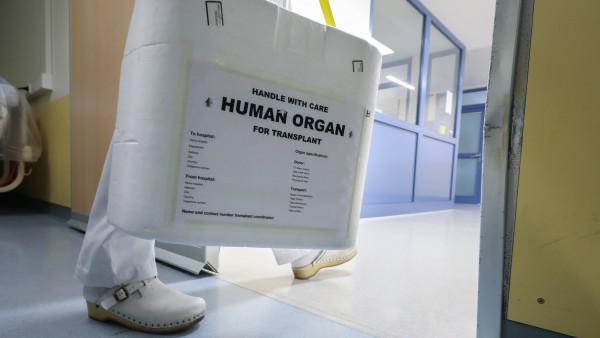 18 Prozent mehr Organspender