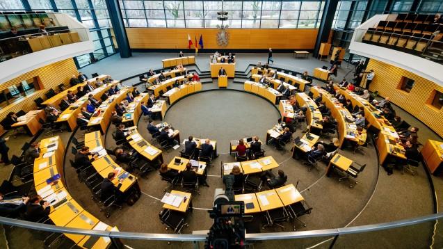 Die AfD-Fraktion im Thüringer Landtag will mit einem Beschluss im Plenum erreichen, dass sich die Landesregierung im Bundesrat nochmals für das Rx-Versandverbot einsetzt. (Foto: imago images / Bauerschmidt)