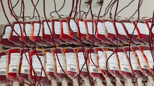 Droht während der EM ein Blutengpass?