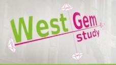 WestGem - die in Deutschland wohl erste interprofessionelle Studie zu Medikationsanalyse und -Management zeigt erste positive Ergebnisse. (Bild: WestGem.de)