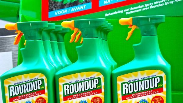 Monsanto verhandelt wieder - mit BASF