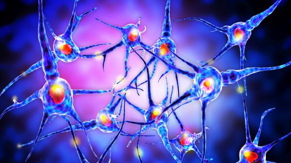 Orales MS-Arzneimittel Mavenclad bei hochaktiver MS