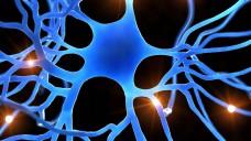 Erkrankungen des Nervensystems und der Psyche verändern das Leben der Betroffenen und ihrer Angehörigen. 2018 kamen jeweils ein neues Medikament gegen Schizophrenie, gegen MS und zur Migräneprophylaxe auf den Markt. (Foto: imago)