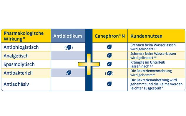 Anzeige Multimodale Phytotherapie Bei Blasenentzündung