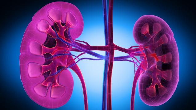 Diabetiker entwickelten teilweise ein akutes Nierenversagen unter den Arzneimitteln Canagliflozin und Dapagliflozin. (Foto: psdesign1 / Fotolia)