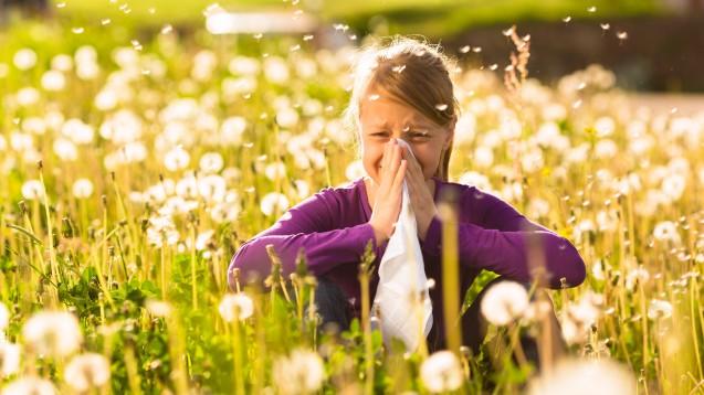 Der Selbstmedikationsmarkt für Antihistaminika wird größer. (b/Foto: Kzenon / stock.adobe.com)