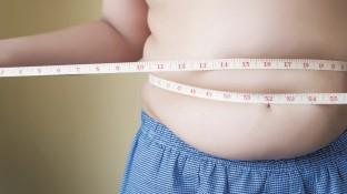 Wenn Kinder zu dick werden