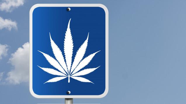 Patienten, die Cannabis auf Rezept erhalten, dürfen Auto fahren, wenn sie es sich zutrauen. (Foto:Karen Roach / stock.adobe.com)