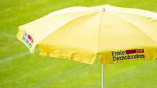 Die FDP befürwortet die Botendienstvergütung und das Makelverbot für E-Rezept-Tokens. (c / Foto: IMAGO / Kirchner-Media)