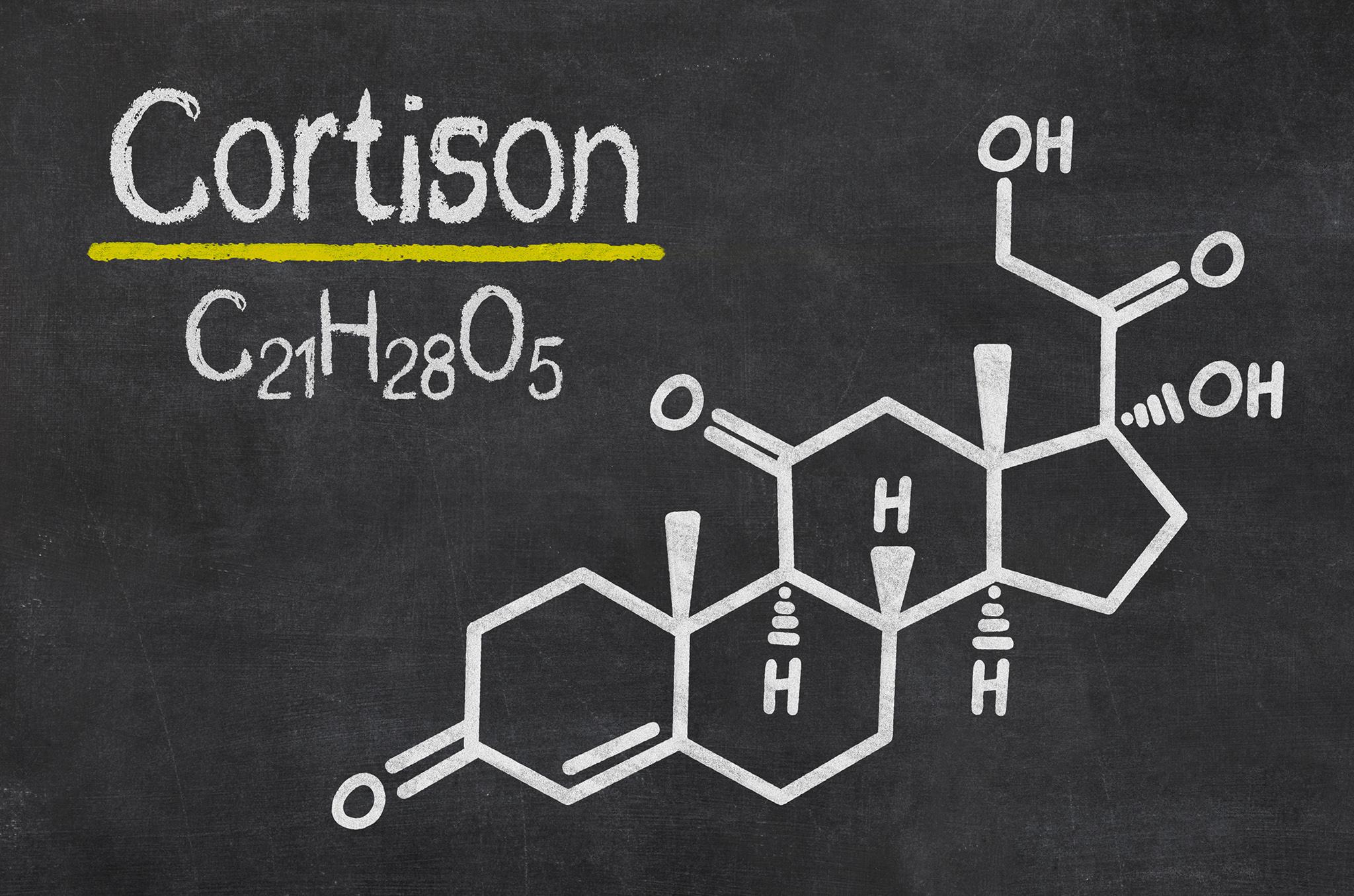 Cortison