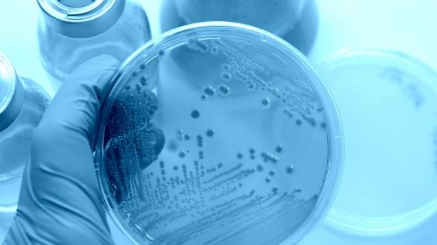 Laut einer aktuellen Studie gehen immer noch zu viele unnötigerweise verschriebene Antibiotika über die HV-Tische deutscher Apotheken. Das fördert Resistenzen. (Foto:cassis / Fotolia)