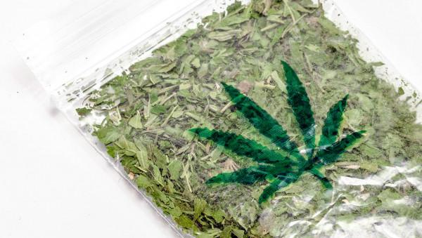 Cannabis zum freien Konsum bald aus Kölner Apotheken?