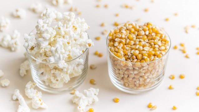 """Vom Maiskolben zum Maiskorn – zum Popcorn. Aber was """"poppt"""" hier eigentlich? (Foto: Irene Yuste / stock.adobe.com)"""