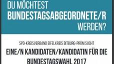 Besondere Kandidatensuche: Die SPD im Eifelkreis veröffentlichte diese Stellenanzeige auf Facebook und ihrer Internetseite, um für die Bundestagswahl 2017 einen geeigneten Bundestagskandidaten zu finden. (Screenshot: DAZ.online)