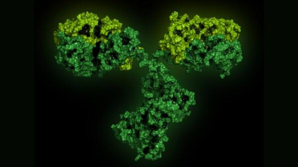Sandoz bringt Rituximab-Biosimilar auf den Weg