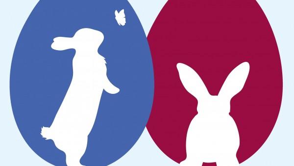 Zählen Sie die Osterhasen!