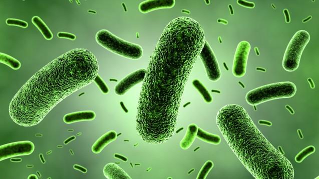 """Das Fachmagazin """"Science"""" hat die wichtigsten Entdeckungen in 2016 gekürt. Darunter: Designer-Proteine, die gegen Infektionen helfen sollen. (Bild: zuki70/Fotlia)"""