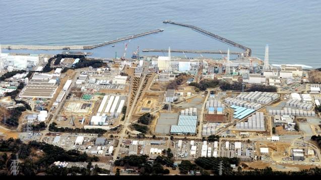 Eine beträchtliche Menge Radioaktivität ist durch den Atomunfall in Fukushima in den Ozean abgegeben worden, doch hat die Belastung stark abgenommen. (Foto: picture alliance / AP Images)